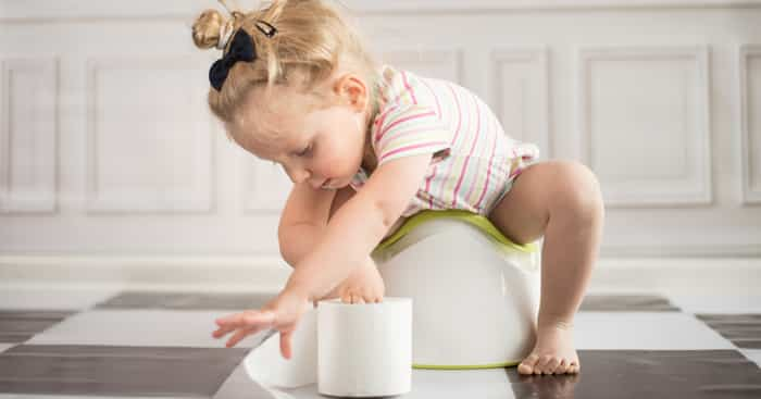 Introduction to Potty Training