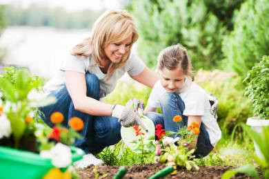 Gardening Summer Holiday Activities