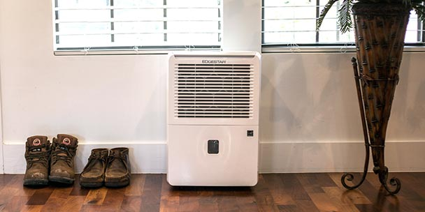 Top 5 Best Dehumidifiers for Your Family