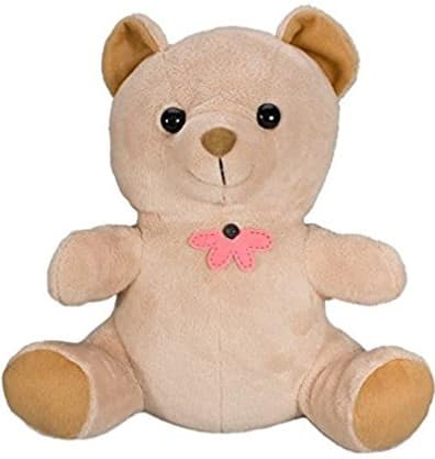 KJB XtremeLife Teddy Bear Hidden Camera