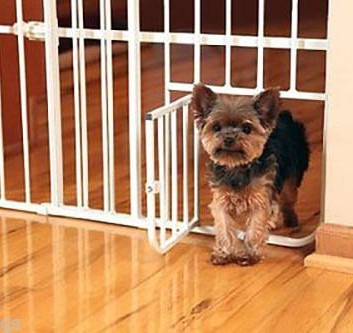 Top 5 Best Baby Gates With Pet Door 2018 Reviews Parentsneed