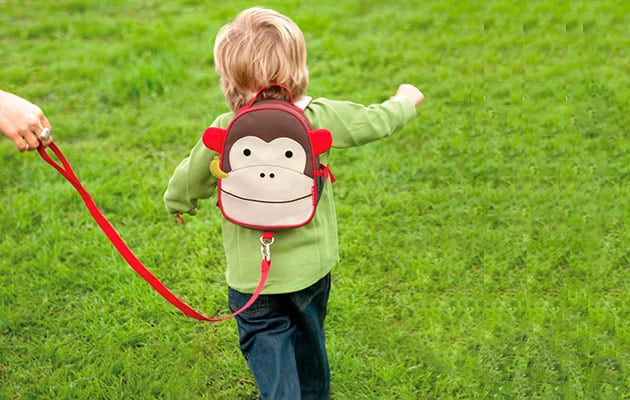 Top 5 Best Child Leash Review