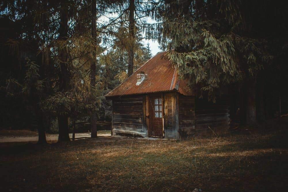 Build a Summer Cabin